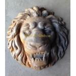 Cara de Leão Grande
